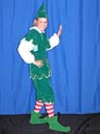 Where to rent ELF COSTUME-GREEN VELVET  M in Kokomo IN