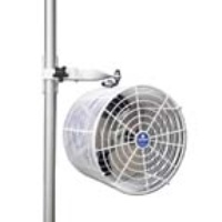 Where to rent TENT FAN, 12  WHITE in Kokomo IN